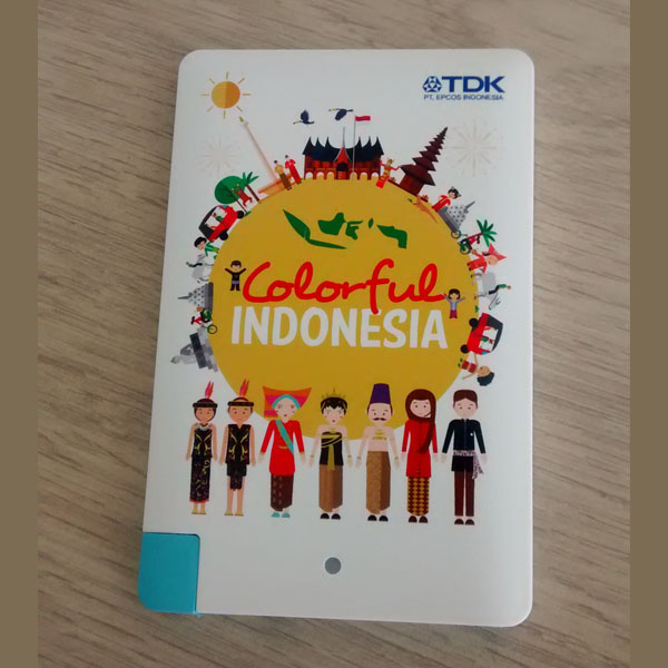Power Bank Kartu